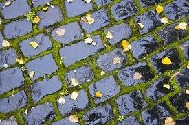 Weather_wetcobblestones
