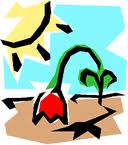 Clipart_drought