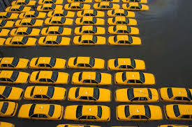 Sandy.submerged.taxicabs