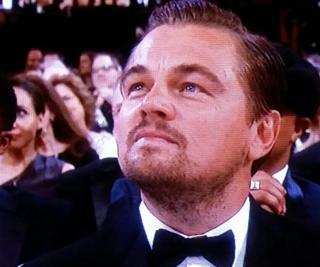 Leo.hollywoodroyalty