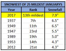Snowiest of Mild Januarys