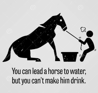 You-can-lead-a-horse-to-water-clip-art