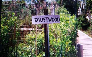 Driftwood.sign.fireislandpines