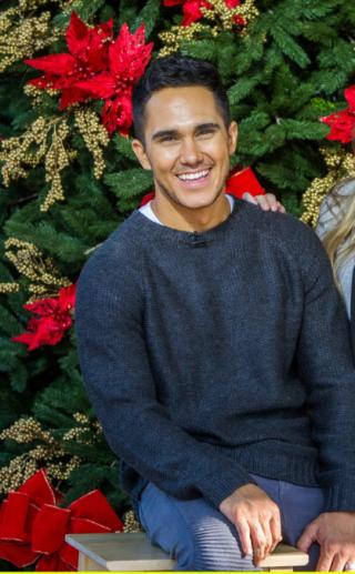 Carlos-penavega-enchanted christmas
