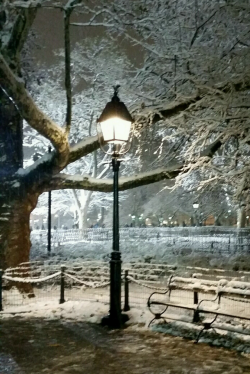 Snow and lamplight