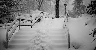 Snowy steps central park
