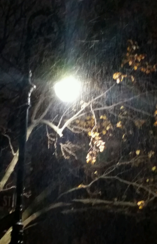 Dec11 snow by streetlight