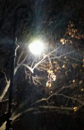 Dec11 snow by streetlight