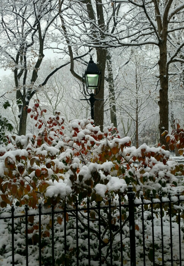 Today In New York Weather History: December 9