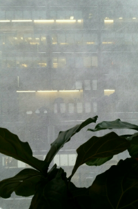 Blizzard viewed from office window