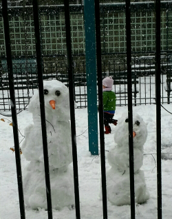 March 21 snowfall