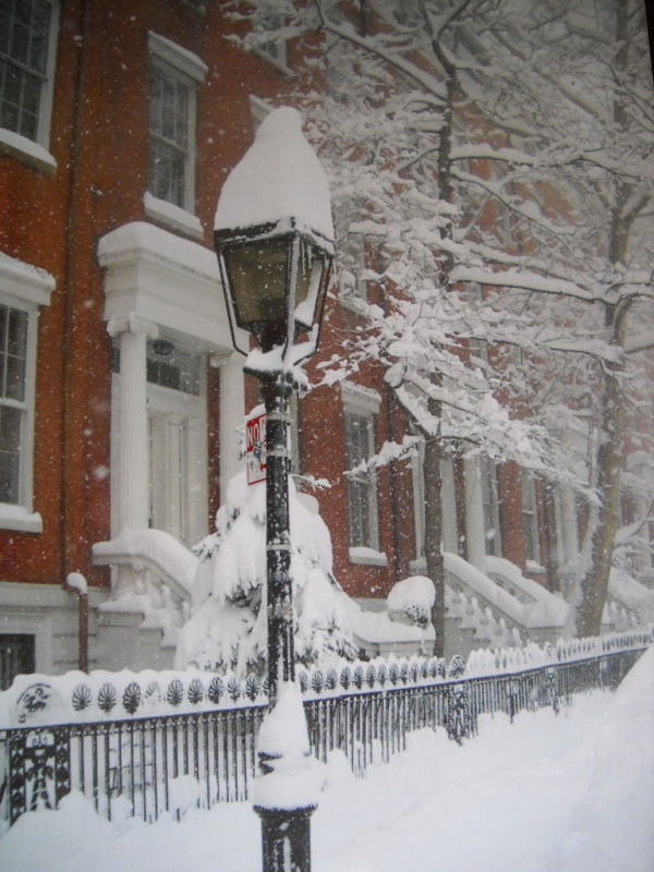 Recap Of Each Winter's Snowstorms In New York (1950
