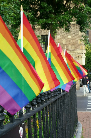 Gay flags waving