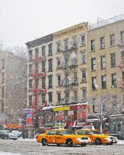 Snow_greenwichvillage_newell